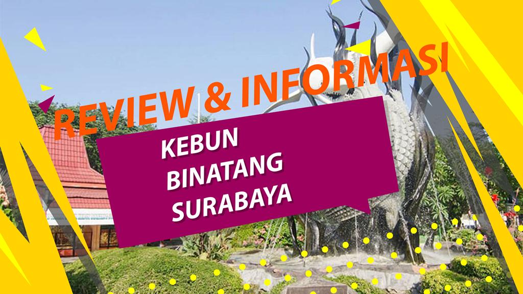 Sewa Mobil Surabaya Murah Lepas Kunci (Mulai 150/day) 8